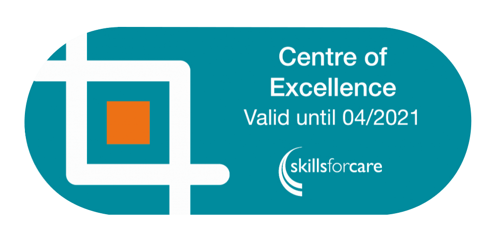 Social Care Courses | Centre of Excellence | Skills for Care | Care Certificate