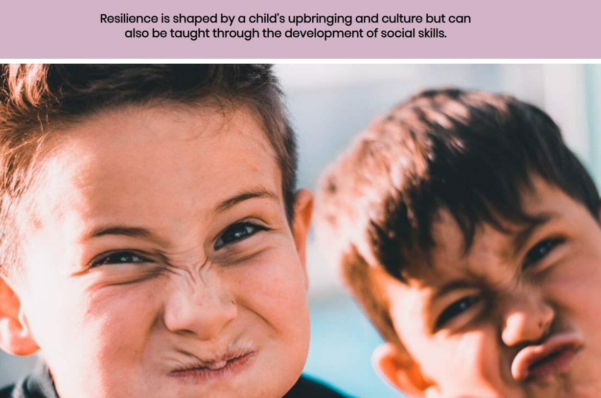 Support wellbeing and resilience of CYP screenshot 3